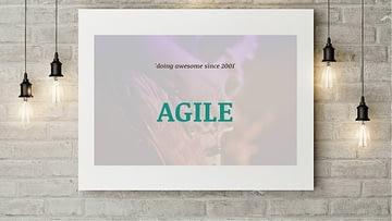 Agile DOvelopers